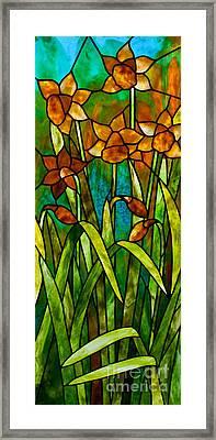 Daffodil Day Framed Print by David Kennedy