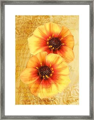 Framed Print featuring the photograph Dahlias by Helene U Taylor