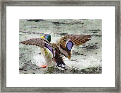 Dancing Bird Framed Print by Sylvia  Niklasson