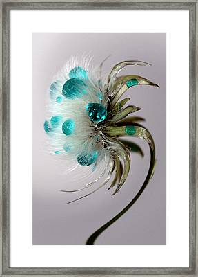 Dandelion Blues Framed Print by Krissy Katsimbras
