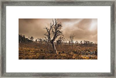 Dark Horror Landscape Of A Creepy Haunted Forest Framed Print