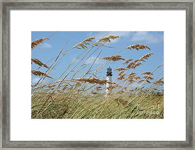 Day At The Beach Framed Print by Carol Groenen