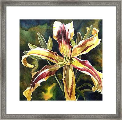 Day Lily Framed Print by Alfred Ng