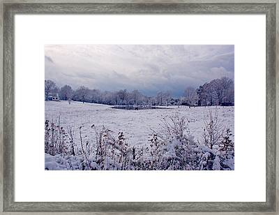 December Snow 005 Framed Print