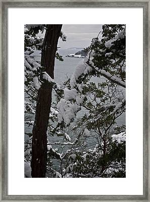 December's Point Framed Print by Tom Trimbath