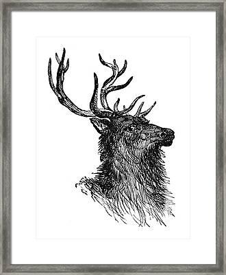 Deer, 19th Century Framed Print by Granger