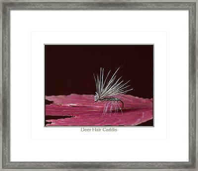 Deer Hair Caddis Framed Print by Neal Blizzard