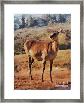 Deer On Mountain  Framed Print by Pixel Chimp