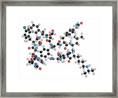 Degarelix Prostate Cancer Drug Molecule Framed Print