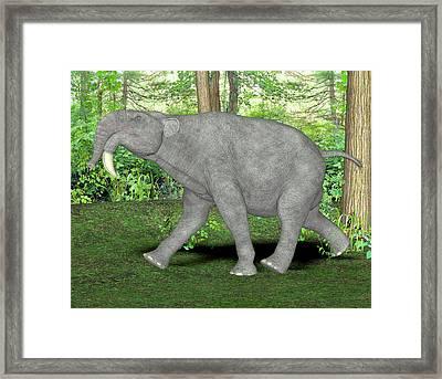 Deinotherium Prehistoric Mammal Framed Print by Friedrich Saurer