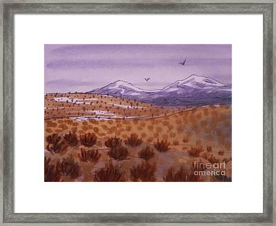 Desert Contrasts Framed Print