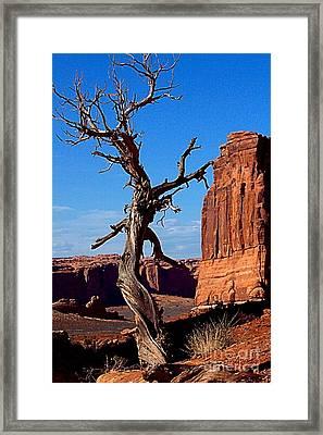Desert Formations Framed Print
