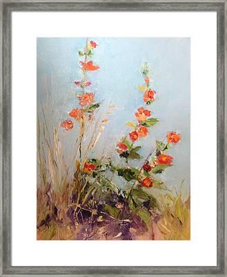 Desert Plants In Bloom Vi Framed Print by Carol Hopper