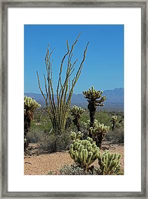 Desert Scenic II Framed Print