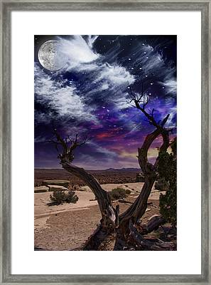 Framed Print featuring the digital art Desert Tree by Bruce Rolff
