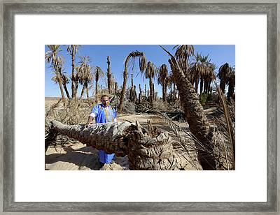 Deserted Oasis Village Framed Print by Thierry Berrod, Mona Lisa Production