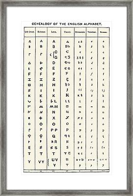Development Of The English Alphabet Framed Print by Sheila Terry