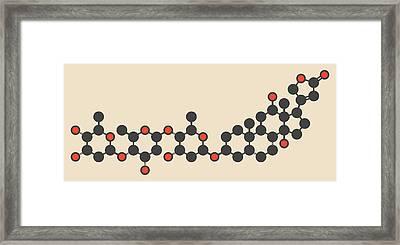 Digoxin Heart Failure Drug Molecule Framed Print by Molekuul