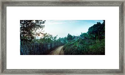 Dirt Road Passing Through An Indigenous Framed Print