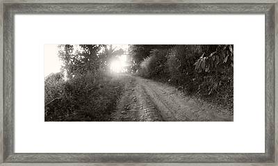 Dirt Road Through A Forest, Chiang Mai Framed Print