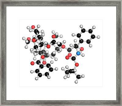 Docetaxel Cancer Drug Molecule Framed Print by Molekuul