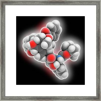 Docetaxel Drug Molecule Framed Print by Laguna Design