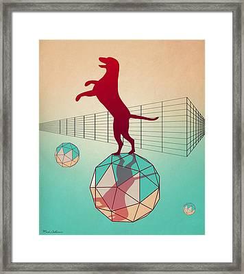 dog Framed Print by Mark Ashkenazi