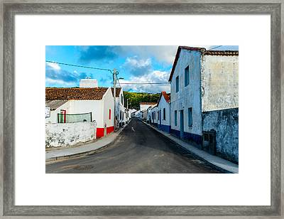 Dog On The Road Framed Print