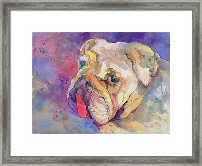 Dog-tired Framed Print by Beverly Berwick