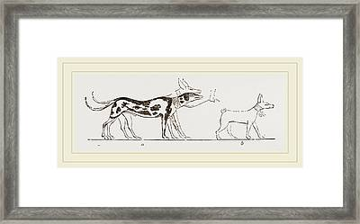 Dogs From Egyptian Paintings Framed Print by Litz Collection
