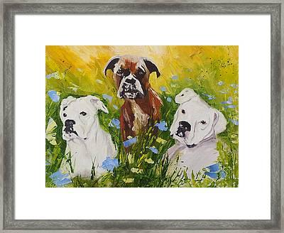 Dogs Painting Fine Art By Ekaterina Chernova Framed Print