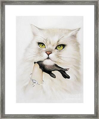 Domestic Cat, Conceptual Image Framed Print
