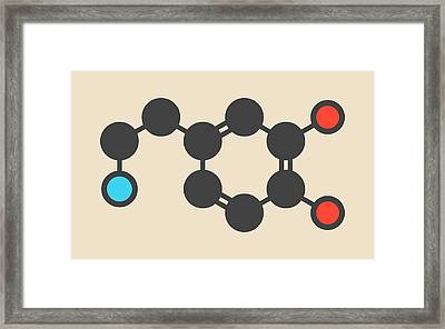 Dopamine Neurotransmitter Molecule Framed Print by Molekuul