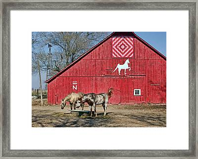 Double Bar N - 4 Framed Print