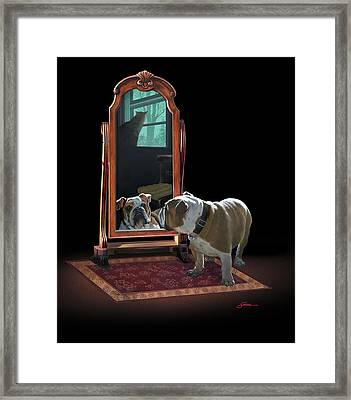 Double Trouble Framed Print by Harold Shull
