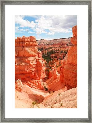 Down Into Bryce Framed Print by Jeff Swan