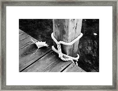 Down On The Dock Framed Print