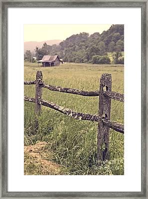 Down On The Farm Framed Print by Edward Fielding