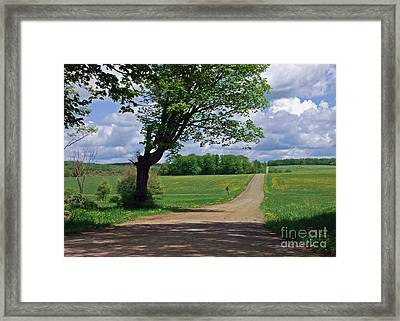 Down The Lane Framed Print