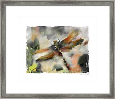 Dragonfly Garden Framed Print