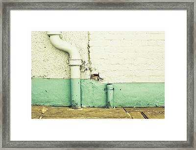 Drainpipe Framed Print by Tom Gowanlock