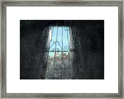 Dreams #052 Framed Print
