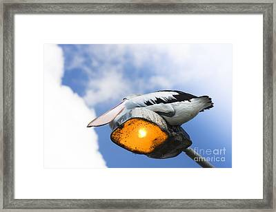 Dreams Framed Print by Jorgo Photography - Wall Art Gallery