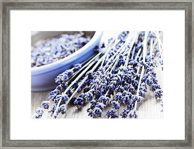 Dried Lavender Framed Print by Elena Elisseeva