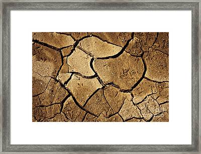 Dry Land Framed Print by Carlos Caetano