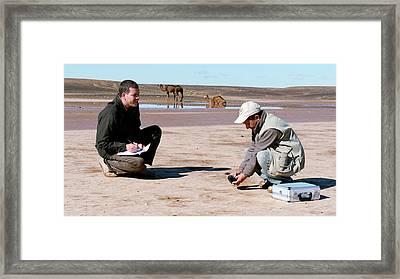 Drying Saharan Lake Framed Print