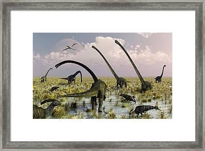 Duckbill Dinosaurs And Large Sauropods Framed Print by Mark Stevenson