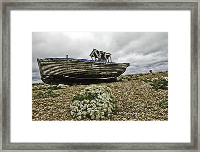Dungeness Framed Print by Lesley Rigg