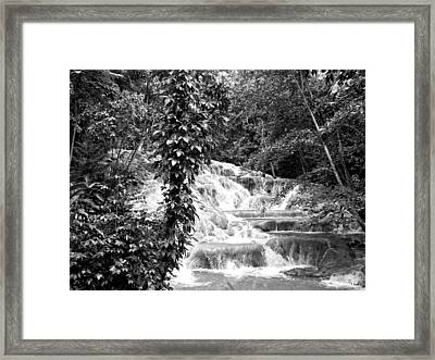 Dunn's River Framed Print by Thomas Leon