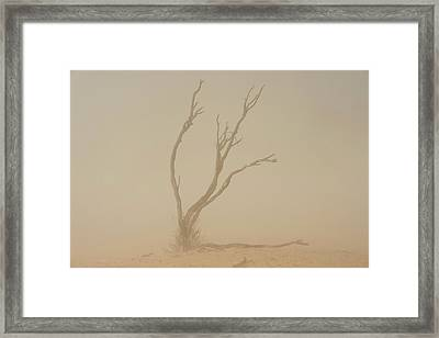 Dust Storm In The Auob Riverbed Framed Print by Tony Camacho